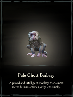 Pale Ghost Barbary.png