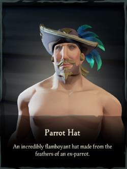 Parrot Hat.png