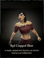 Red Cropped Shirt.png