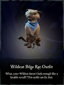 Wildcat Bilge Rat Outfit.png