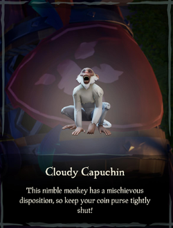 Cloudy Capuchin.png