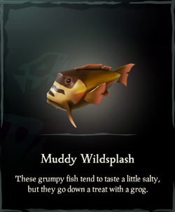 Muddy Wildsplash.png