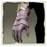 Parrot Gloves inv.png
