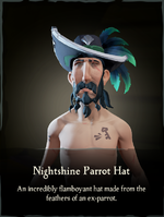 Nightshine Parrot Hat.png