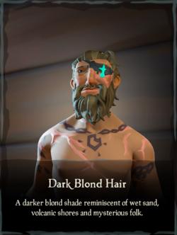 Dark Blond Hair.png
