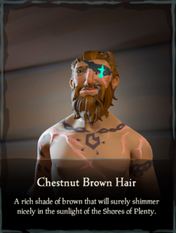Chestnut Brown Hair.png