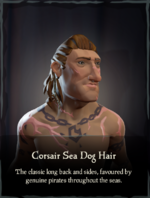 Corsair Sea Dog Hair.png