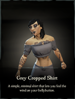 Grey Cropped Shirt.png