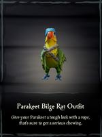 Parakeet Bilge Rat Outfit.png