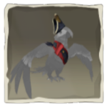 Macaw Admiral Outfit inv.png