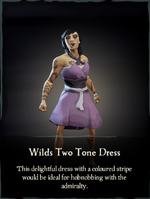 Wilds Two Tone Dress.png
