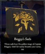 Briggsy's Sails.png
