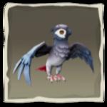 Grey Wing Parakeet inv.png