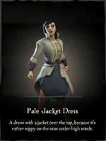 Pale Jacket Dress.png
