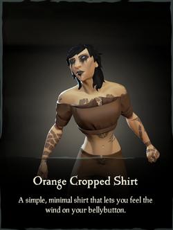 Orange Cropped Shirt.png