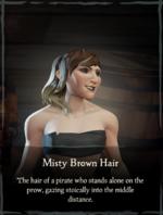 Misty Brown Hair.png