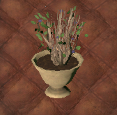 Sparse Bush