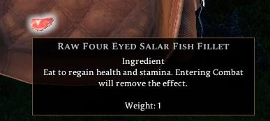 Four Eyed Salar Fish Fillets