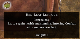 Red-leaf Lettuce