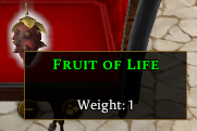 FruitOfLife.PNG