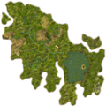 ForestTopDown.png