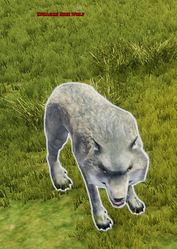 Enraged Dire Wolf
