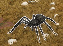 Awakened Spider