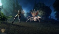 E3 Skyforge Lightbinder.jpg
