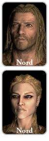 Mp nord m.png