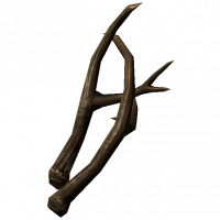 SmallAntlers.png