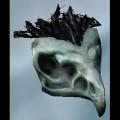 BoneHawkSkull.png