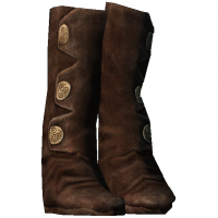 Boots1.png