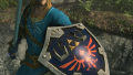 Switch Shield.png