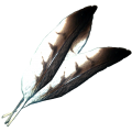 HawkFeathers.png