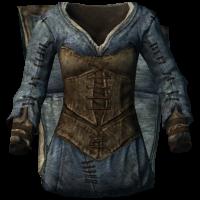 Clothes blue female.png