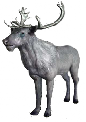 Whitestag.png