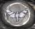 Moth glyph