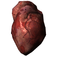 HumanHeart.png