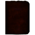 Book Dossier4.png