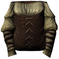 Clothes brown2 female.png