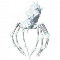 JumpingFrostSpider.png