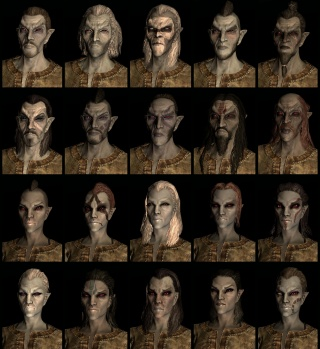 Dark Elf race face compilation.