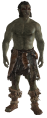 ChiefLarak.png
