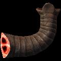 MammothSnout.png