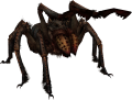 FrostbiteSpider.png