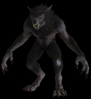 Werewolf Skyrim Wiki