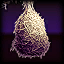 Icons Arachne Cocoon.png