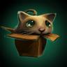 Box Cat Ward