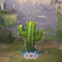 Mr. Cactus Ward