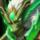 T Set JadeDragon Icon.png